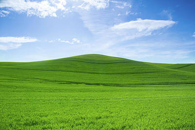 Photograph - Windows Xp by Kunal Mehra