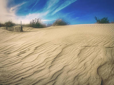 Photograph - Windswept Sandy Hook Dune by Gary Slawsky