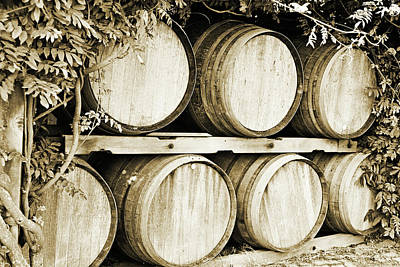 Central Coast Winery Photograph - Wine Barrels by Scott Pellegrin