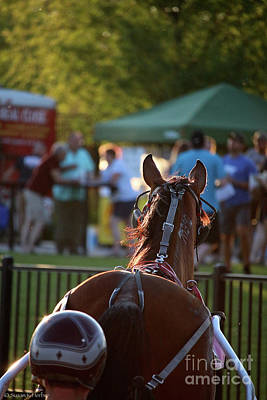 Photograph - Winners Circle by Susan Herber