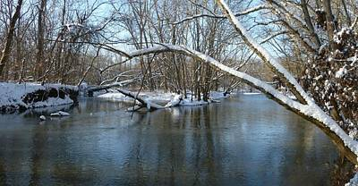 Photograph - Winter Along The Big Darby by Robert Papps