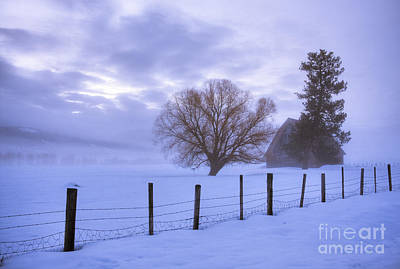 Photograph - Winter Atmosphere by Idaho Scenic Images Linda Lantzy