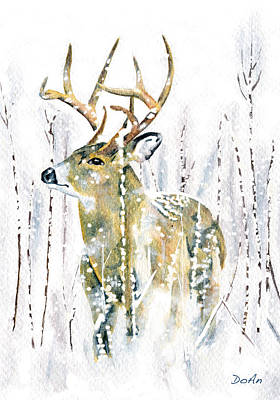 Winter Deer Art Print by Antony Galbraith