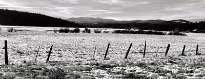 Photograph - Winter Fences by Jennifer Lake