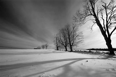 Digital Art - Winter Field by Patrick Groleau
