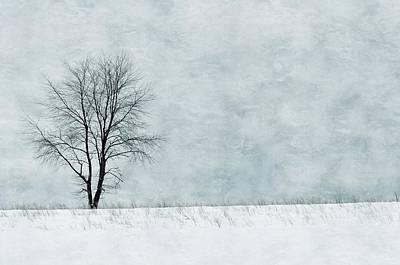 Photograph - Winter Horizon by JAMART Photography