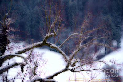 Winter In Switzerland Art Print