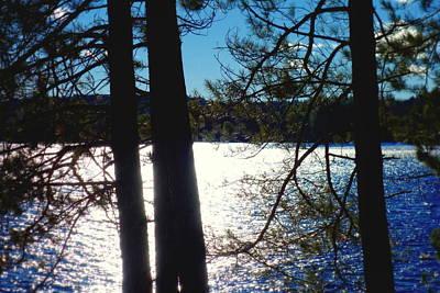 Photograph - Winter Lake by Valentino Visentini