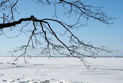 Photograph - Winter by Masha Batkova
