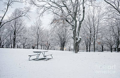 Photograph - Winter Park by Charline Xia
