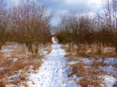 Snowy Trees Mixed Media - Winter Path by Miroslav Nemecek