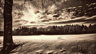 Photograph - Winter Scene by Pixabay