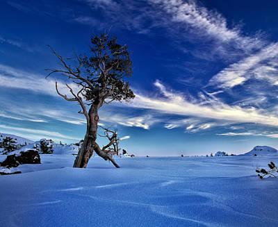 Jets Photograph - Winter Sky by Leland D Howard