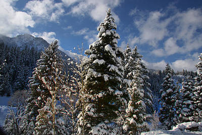 Photograph - Winter Sky's by Mark Smith
