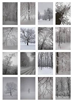 Winter Time Art Print by Gabriela Insuratelu
