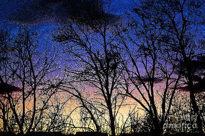 Photograph - Winter Twilight by Karen Adams