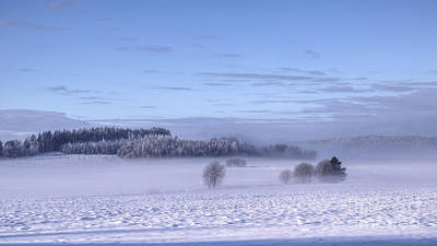 Winter Light Photograph - Winter by Veikko Suikkanen