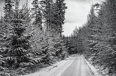 Photograph - Winter Way by Jenny Rainbow
