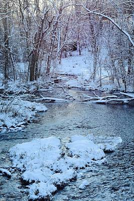 Photograph - Winter Wonderland by Dacia Doroff