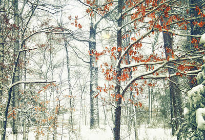 Photograph - Winter Wonderland by Gerlinde Keating - Galleria GK Keating Associates Inc