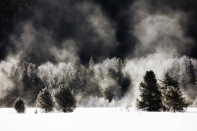 Photograph - Winter's Embrace by Robbie George
