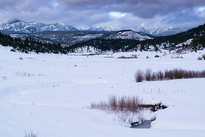 Photograph - Pagosa Winter Pasture by Jason Coward