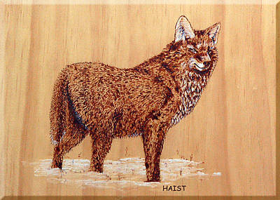 Pyrography - Wolf by Ron Haist
