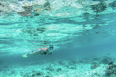 Photograph - Woman Snorkeling Underwater In Indian Ocean, Maldives by Michal Bednarek