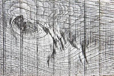 Wood Detail Art Print by Tom Gowanlock