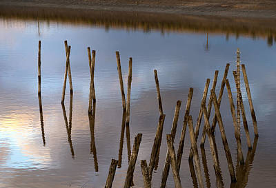 Photograph - Wood In The Water  by Radoslav Nedelchev