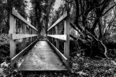 Wooden Bridge Art Print