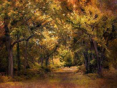 Clearing Digital Art - Woodland Clearing by Jessica Jenney