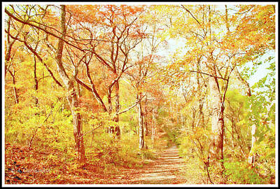 Photograph - Woodland Trail In Autumn, Montgomery County, Pennsylvania by A Gurmankin