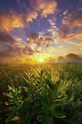 Unity Photograph - World Without End by Phil Koch