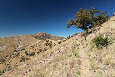Yaqui Photograph - Yaqui Ridge Trail by Mike Cavaroc