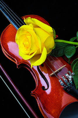 Concert Photograph - Yellow Rose On Violin by Garry Gay