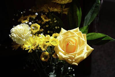 Photograph - Yellow Rose by Whispering Peaks Photography