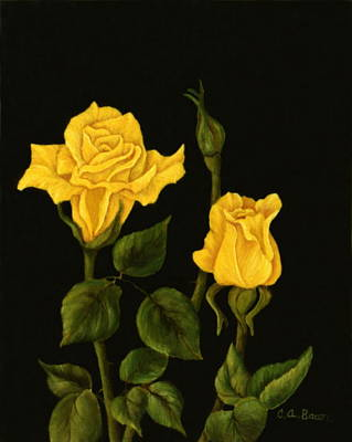 Painting - Yellow Rose Of Texas by Charlotte Bacon