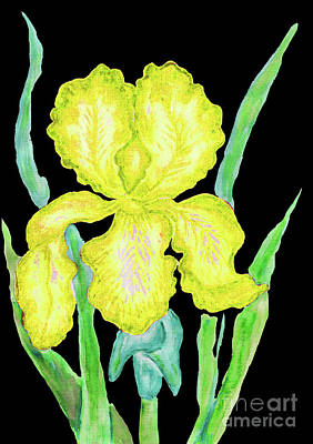 Painting - Yellowe Iris, Painting by Irina Afonskaya