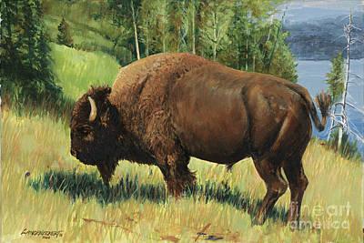 Yellowstone Buffalo Original