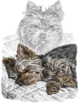 Yorkshire Terrier Wall Art - Drawing - Yorkie - Yorkshire Terrier Dog Print by Kelli Swan
