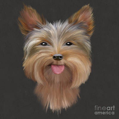 Yorkshire Terrier Wall Art - Digital Art - Yorkie by John Edwards