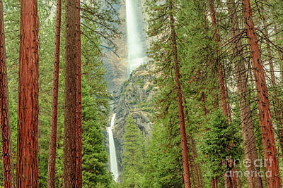 Photograph - Yosemite Falls by Ben Graham