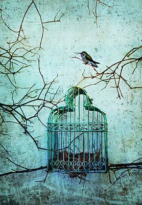 Mixed Media - Hummingbird And Cage by Eleanor Caputo
