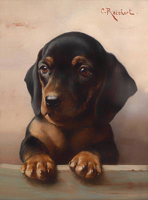 Dachshund Oil Painting - Young Dachshund by Mountain Dreams