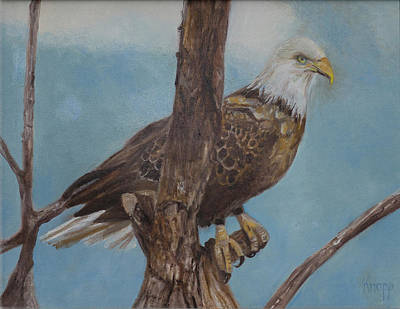 Young Eagle Original