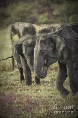 Photograph - Young Elephants Eating Grass by Patricia Hofmeester