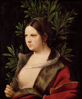 Woman Painting - Young Woman, Laura by Giorgione