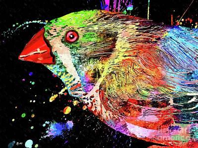 Mixed Media - Zebra Finch by Daniel Janda