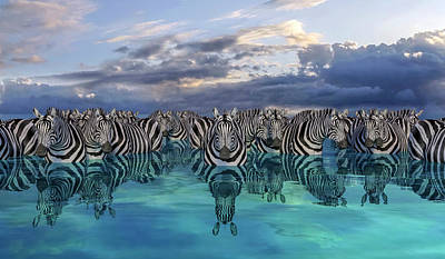 Surrealism Digital Art - Zebras by Betsy Knapp